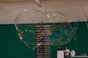 Largest Indoor Free Floating Soap Bubble (2019)
